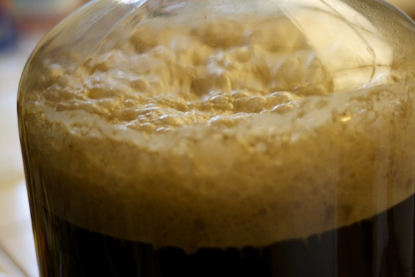 Top fermenting yeasts