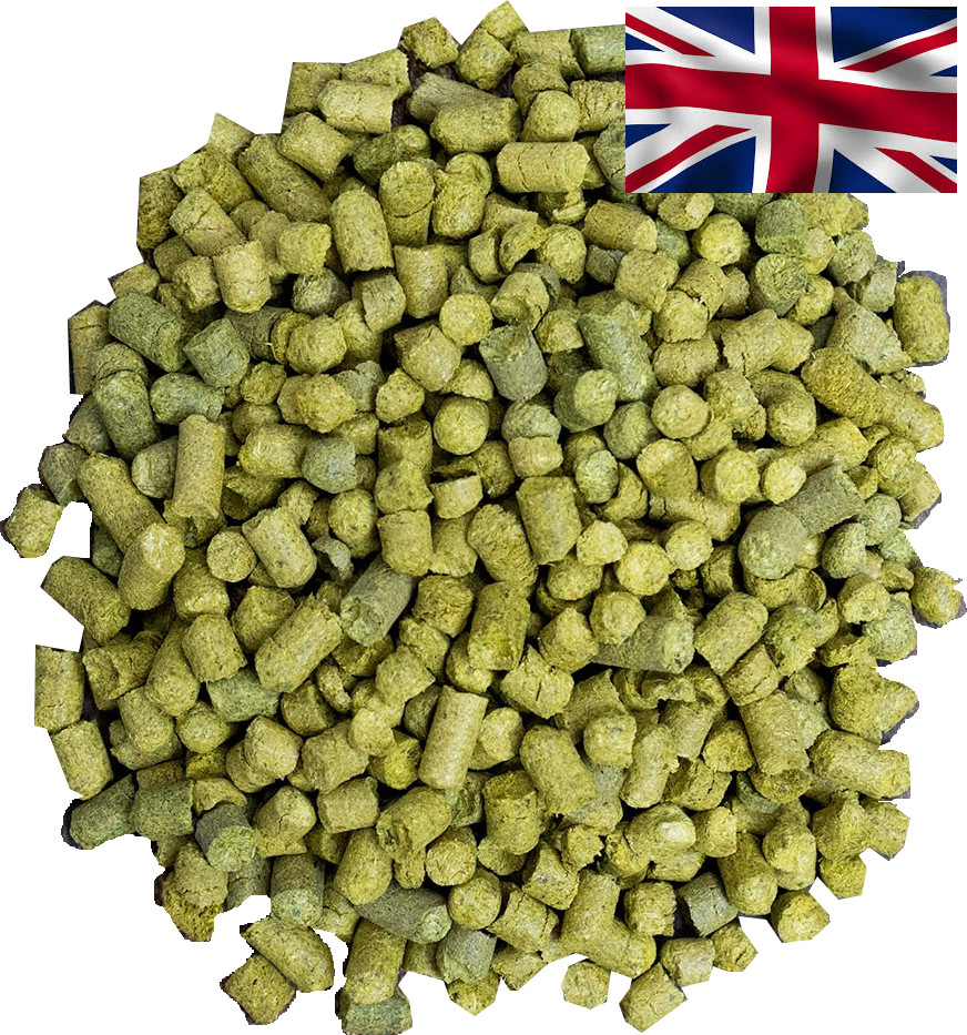 English varieties of hops