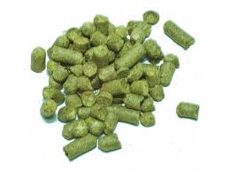 Northern Brewer - German dual purpose hops