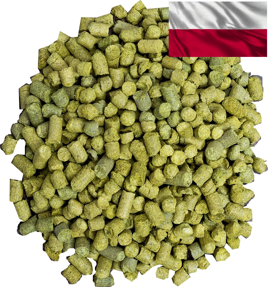 Poland hops Marynka